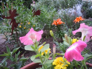 Flowers and fairies fill the cottage garden at CAC.